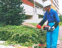 庭木の剪定や庭の草引き、清掃